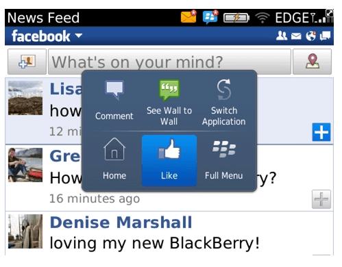 BlackBerry Beta Version
